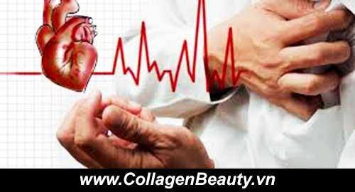 Kết quả hình ảnh cho sức khỏe tim mạch